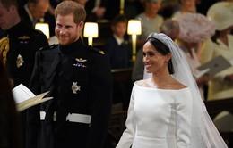 Trở lại làm việc, Hoàng tử Harry và Meghan Markle trì hoãn tuần trăng mật