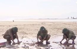 """Phát động chiến dịch """"Biển Việt Nam xanh"""" tại 5 tỉnh miền Trung"""