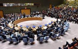 Kuwait công bố dự thảo nghị quyết của Liên Hợp Quốc về Gaza