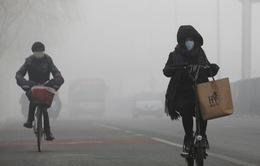 Các sáng kiến đối phó ô nhiễm không khí