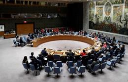 Ba Lan đảm nhận chức Chủ tịch luân phiên Hội đồng Bảo an LHQ