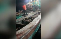 Bắt 2 tàu cá sang mạn dầu DO trái phép trên biển Côn Đảo
