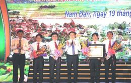 Nghệ An: Nam Đàn đón bằng công nhận huyện đạt chuẩn nông thôn mới