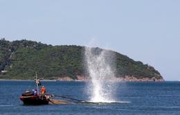 Ngăn chặn sử dụng mìn đánh bắt cá trái phép