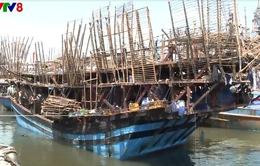Tàu cá Đà Nẵng cứu tàu mực Quảng Ngãi cùng 49 thuyền viên gặp nạn trên biển