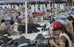 Tham gia CPTPP, doanh nghiệp Việt cần đặc biệt lưu ý trong lĩnh vực đầu tư