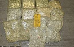Thái Lan thu giữ gần 12 triệu viên ma túy đá