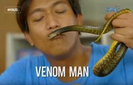Cho rắn hổ mang cắn mỗi tuần để tăng cường hệ miễn dịch tự nhiên