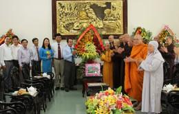 Lãnh đạo tỉnh Thừa Thiên Huế thăm các chức sắc Phật giáo