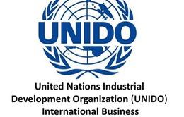 Palestine vừa gia nhập 2 tổ chức và một công ước của Liên Hợp Quốc