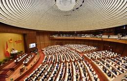 Kỳ họp thứ 5, Quốc hội khóa XIV: Chương trình làm việc ngày 31/5