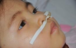 Ám ảnh ánh mắt bé 3 tuổi bị viêm não