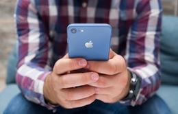 iPhone 8S sẽ có 3 màu xanh, vàng và hồng