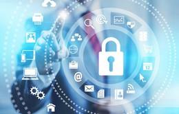 Cần sớm ban hành Luật An ninh mạng