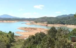 Một xã có hàng nghìn ha đất chưa được cấp phép quyền sử dụng đất