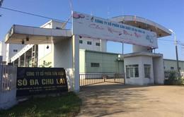 Quảng Nam: Báo động doanh nghiệp nợ thuế