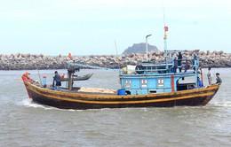 Bình Thuận quyết liệt xử lý tàu cá vi phạm khai thác thủy sản