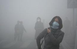 WHO: 9/10 người hít thở không khí ô nhiễm mỗi ngày