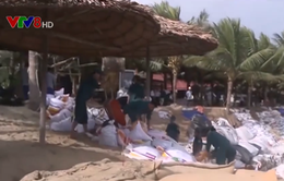 Giải pháp nào hạn chế việc xói lở bờ biển Đà Nẵng và Hội An