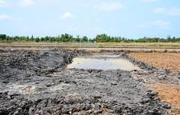 Chủ động phòng chống thiên tai - Giải pháp chống biến đổi khí hậu tại Cà Mau