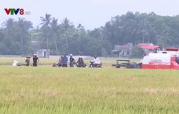 Điều tra xử lý nạn bảo kê máy gặt lúa ở Thanh Hóa