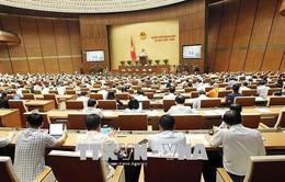 Quốc hội cho ý kiến chương trình xây dựng Luật và pháp lệnh năm 2018