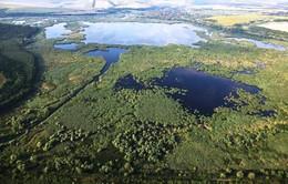Khu bảo tồn thiên nhiên Srebarna tại Bulgaria