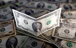 Giá USD tại các ngân hàng thương mại tiếp tục tăng cao
