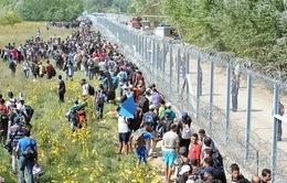 Hungary đệ trình luật thắt chặt chính sách nhập cư