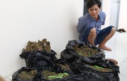 Bộ Công an mở đợt cao điểm triệt phá tội phạm ma túy