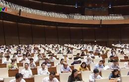 Trình Quốc hội Luật Phòng, chống tham nhũng (sửa đổi)