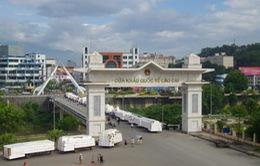 Sẽ xét nghiệm sàng lọc HIV nhanh cho lái xe  qua cửa khẩu quốc tế ở Lào Cai