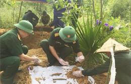 Quảng Trị tìm thấy 2 hài cốt liệt sĩ kèm di vật có khắc tên