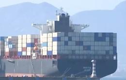 Trung Quốc tìm kiếm đồng minh đối đầu thương mại với Mỹ