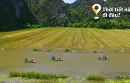 """""""Thời tiết này đi đâu?"""": Ngắm """"mùa vàng"""" trên dòng sông Ngô Đồng"""
