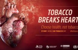 Người Việt chi 31.000 tỷ mỗi năm cho việc mua thuốc lá