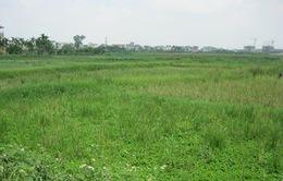 Hà Nội chuẩn bị đấu giá hàng trăm ha đất