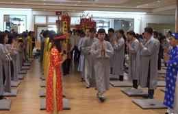 500 kiều bào tại Hàn Quốc dự khóa tu học Phật pháp