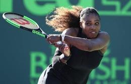 Tay vợt 23 lần vô địch Grand Slam Serena Williams rút lui khỏi giải Madrid Master