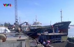Tín hiệu vui từ xuất khẩu qua cửa biển Quảng Trị