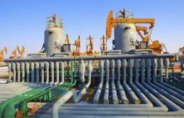 Algeria kêu gọi các công ty Mỹ đầu tư vào lĩnh vực dầu khí