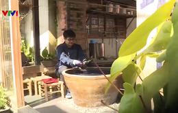 Trung Quốc: Trải nghiệm lên núi nhuộm vải lam thảo