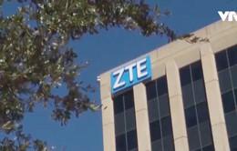 ZTE gửi đơn xin hoãn lệnh cấm của Mỹ
