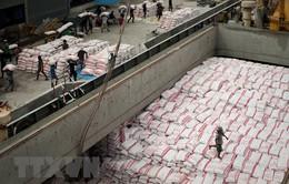 Thái Lan là nước xuất khẩu gạo lớn nhất thế giới trong quý I/2018
