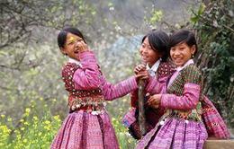 VTV góp phần tích cực quảng bá hình ảnh đất nước, con người, tiềm năng du lịch Việt Nam ra thế giới