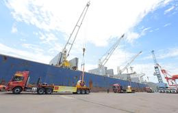 Tập đoàn Hoa Sen xuất khẩu 15.000 tấn tôn đến châu Âu