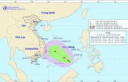 Chủ động ứng phó với vùng áp thấp trên khu vực giữa và Nam biển Đông