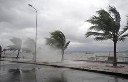 Trong tháng 8 khả năng có 1 - 2 cơn bão hoặc áp thấp nhiệt đới