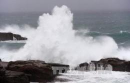 Tháng 6, sẽ có 1-2 cơn bão hoặc áp thấp nhiệt đới