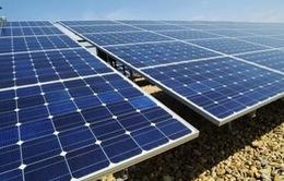 Ninh Thuận trao chứng nhận đầu tư cho 9 dự án điện mặt trời